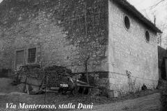 Via-Monterosso-stalla-Dani